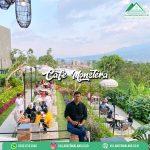 cafe monstera